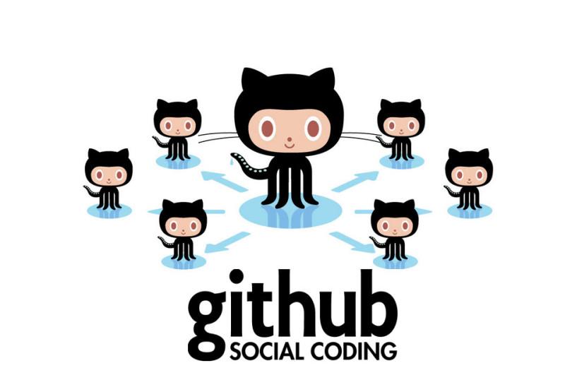 GitHub Social Coding image
